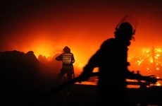 Nam Phi: Cháy rừng nghiêm trọng khiến hàng chục nghìn người sơ tán