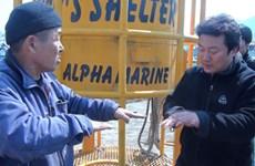LHP Busan bị cắt tài trợ vì chiếu phim về vụ chìm phà SEWOL