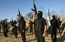 Tình báo Mỹ đã tiên liệu sự xuất hiện của IS nhiều năm trước
