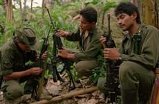 Xung đột tiếp tục leo thang tại Colombia, bất chấp hòa đàm
