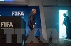 Từ chức chủ tịch FIFA là một quyết định khôn ngoan của Sepp Blatter