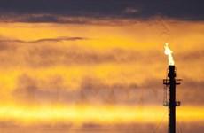 Saudi Arabia phải nhường một phần thị trường dầu thô cho Iran