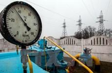 EU tự tin về nguồn cung khí đốt sau khi Nga ngừng cung cấp