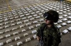 Ecuador triệt phá 11 đường dây buôn bán và vận chuyển ma túy