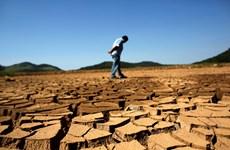 Nền nhiệt bề mặt Trái Đất lên cao nhất trong 135 năm qua
