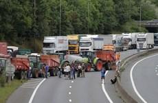 """Nông dân Pháp chặn đường biểu tình phản đối giá nông sản """"lao dốc"""""""