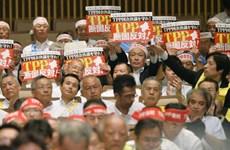 Nông dân Nhật Bản yêu cầu chính phủ bảo hộ trước khi ký TPP