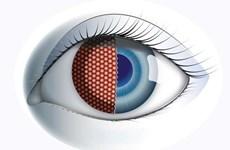 Thụy Sĩ chế tạo mắt ruồi nhân tạo cho máy bay không người lái