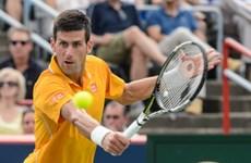 Novak Djokovic đối đầu Andy Murray ở chung kết Rogers Cup 2015