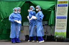 Bước tiến mới trong phát triển vắcxin phòng ngừa virus MERS