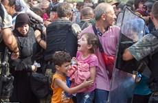 Hình ảnh kinh hoàng trong cuộc trấn áp người di cư ở Macedonia
