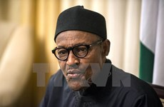 Tổng thống Nigeria bổ nhiệm những vị trí quan trọng trong nội các