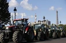 Chính phủ Pháp công bố gói hỗ trợ tài chính mới cho nông dân