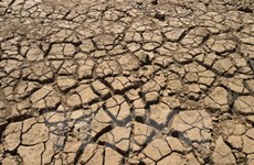 [Video] Nhiệt độ toàn cầu có thể cao bất thường vì El Nino