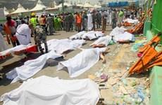 Iran yêu cầu Saudi Arabia nhận trách nhiệm về thảm họa giẫm đạp