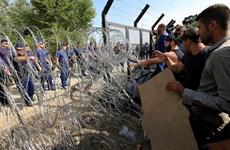 Thổ Nhĩ Kỳ muốn mở trung tâm tiếp nhận người tị nạn ngay trong Syria