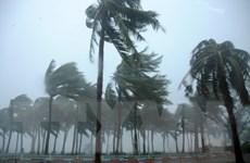 Trung Quốc vẫn duy trì cảnh báo nguy hiểm với bão Mujigae