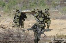 Anh đưa quân tới khu vực Baltic nhằm đề phòng Nga tấn công