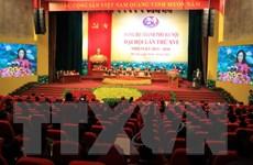 Khai mạc Hội nghị đại biểu Đảng bộ Ngoài nước nhiệm kỳ 2015-2020