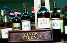Ngành rượu vang Chile đặt kỳ vọng lớn vào hiệp định TPP