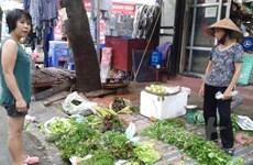 [Video] Rau muống tại Thành phố Hồ Chí Minh nhiễm kim loại nặng