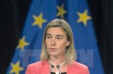 Hội nghị Bộ trưởng EU-Trung Á họp bàn nhiều vấn đề quan trọng