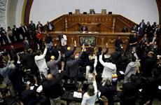 Phe đối lập Venezuela kiểm soát quốc hội lần đầu tiên sau 17 năm