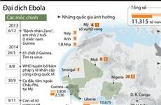 [Infographics] Nhìn lại sức tàn phá kinh hoảng của đại dịch Ebola