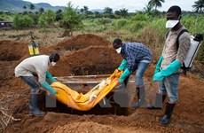 Thêm một nữ sinh 22 tuổi tử vong do nhiễm Ebola tại Sierra Leone