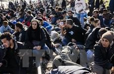 Anh và Đức tăng cường các biện pháp hỗ trợ người di cư