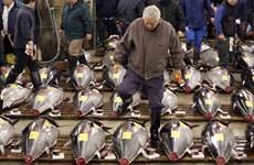 Nhật Bản: Xuất khẩu nông sản và thủy hải sản năm 2015 cao kỷ lục