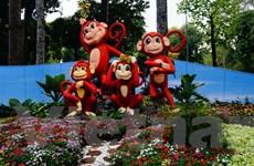 Những đặc điểm nổi bật của con khỉ trong văn hóa Việt Nam