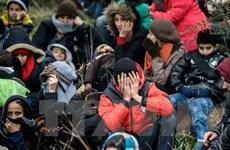 Thổ Nhĩ Kỳ dọa EU: Sẽ trục xuất 2,5 triệu người tị nạn Syria
