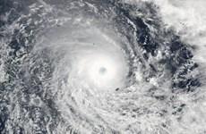 """Fiji ban bố tình trạng thảm họa thiên tai do """"siêu"""" bão Winston"""