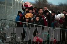 Người di cư tức giận xô đổ hàng rào biên giới Macedonia-Hy Lạp