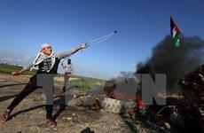 Israel bắt giữ hàng chục người Palestine ở Bờ Tây và Dải Gaza