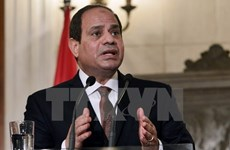 Ai Cập và Pháp tìm cách giải quyết khủng hoảng tại khu vực MENA