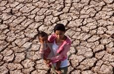 Công bố tình trạng hạn hán xảy ra trên địa bàn tỉnh Bình Thuận