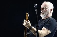Cựu thành viên ban nhạc Pink Floyd sẽ trình diễn ở Pompeii