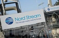 """Tám nước châu Âu phản đối đường ống """"Dòng chảy phương Bắc 2"""""""