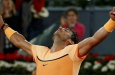 Rafael Nadal đại chiến Andy Murray ở bán kết Madrid Open 2016