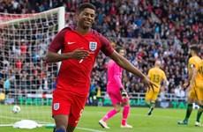 Tranh cãi về việc Rashford dự Euro 2016 cùng đội tuyển Anh