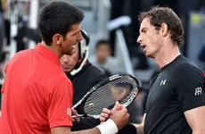 """Andy Murray """"đại chiến"""" Djokovic ở chung kết Roland Garros"""