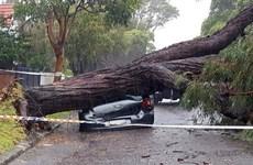 Australia: Bão lớn hoành hành gây ảnh hưởng hàng triệu người