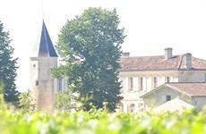 Đến EURO, ghé thăm vùng rượu vang nức tiếng nước Pháp