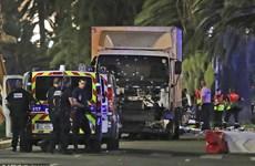 """Vụ khủng bố Nice: """"Các nạn nhân đã bắn đi như ky bowling"""""""