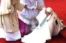 Giáo hoàng Francis bị ngã ở buổi lễ được truyền hình trực tiếp