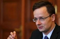 """Hungary: Nga tấn công một thành viên NATO là """"không thực tế"""""""