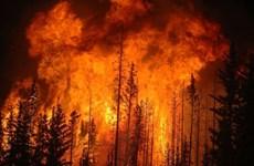 Swiss Re: Kinh tế thế giới thiệt hại 71 tỷ USD vì thiên tai