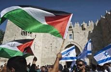 LHQ cảnh báo bước thụt lùi trong tiến trình hòa bình Trung Đông